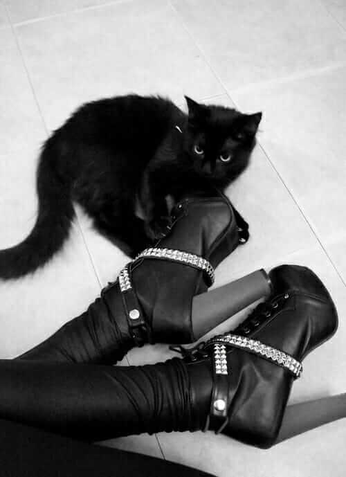 Nu-Goth Fashion Tip Nº 22: Nu Goth girl with Black cat